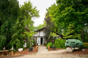 Locally Grown Trees And Shrubs